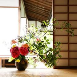 日本文化のイメージ画像
