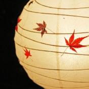 和紙のアート画像