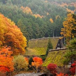 飛騨高山の画像